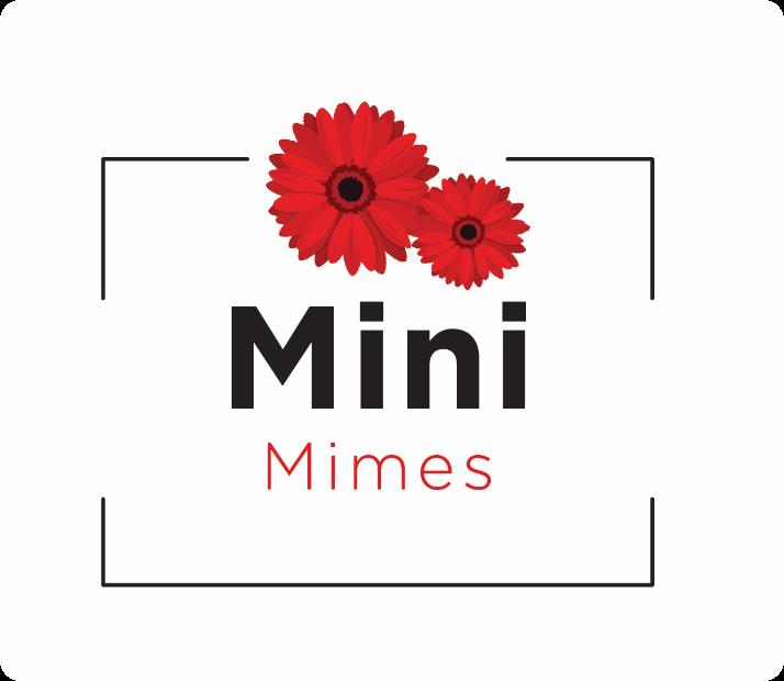 Mini Mimes